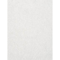 Suede Cloth - White - 1 Yd