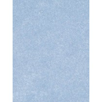 |Fleece Fabric Lt. Blue - 1 Yd
