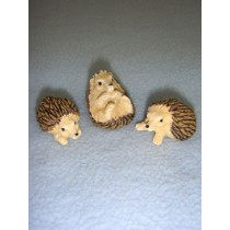 "1"" Miniature Hedgehogs"
