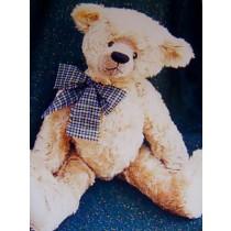 """ 20"""" Winston Bear Pattern"""
