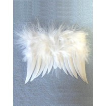 "6"" x 5 1_2"" White Feather Angel Wings"