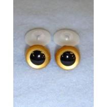 Animal Eye - 16.5mm Gold Pkg_50