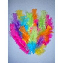 Assorted Neon Feathers