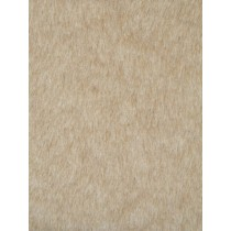Honey Beige Short Teddy Fur 1 Yd