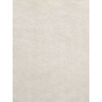 Ivory Soft Cuddle Solid Fabric - 1 Yd