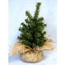 "Miniature - 8"" Christmas Tree"