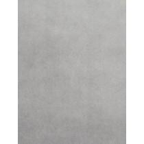 Silver Cuddle Short Fabric - 1 Yd