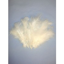 White Fluffy Turkey Feathers