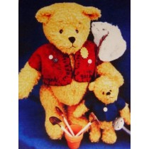 "|14"" & 7"" Best Buddies Bear Pattern"