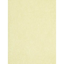 |Fleece Fabric Light Yellow - 1 Yd