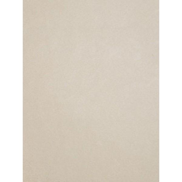 Ivory Cuddle Short Fabric - 1 Yd