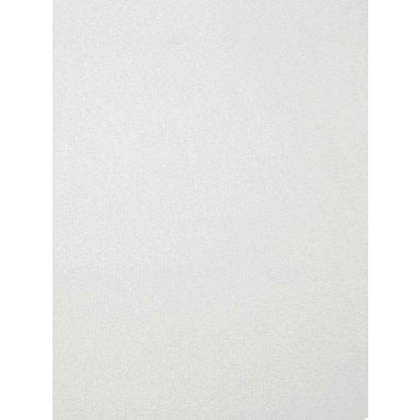 White Cuddle Short Fabric - 1 Yd